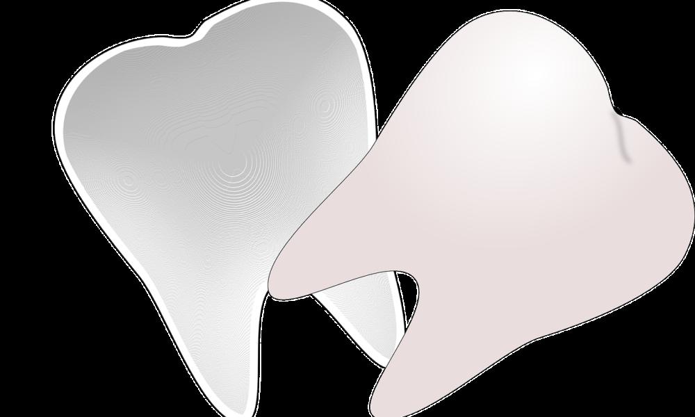 Ładne urodziwe zęby także efektowny prześliczny uśmiech to powód do zadowolenia.